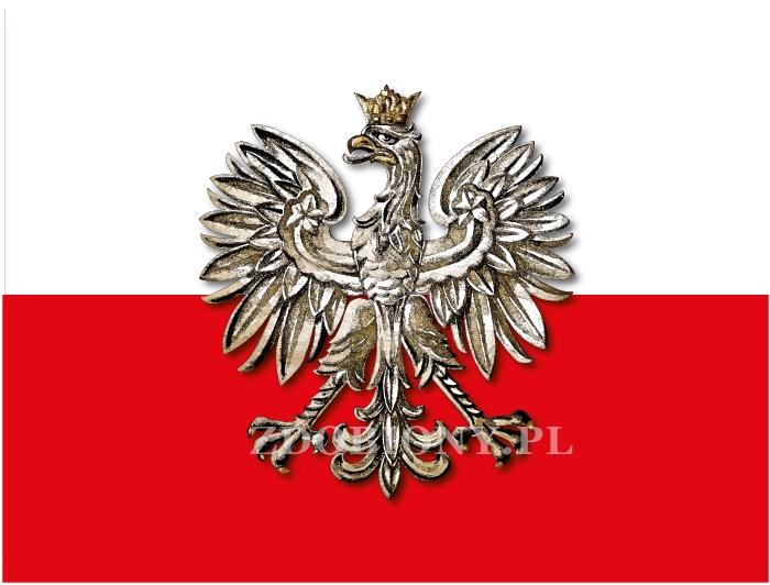 Naklejka Orzeł Polski barwy narodowe flaga tablica ADR